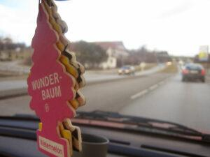 Best Air Fresheners for Cars